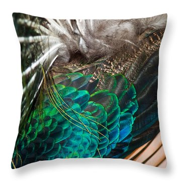 Feathers Of The Green Peafowl Throw Pillow