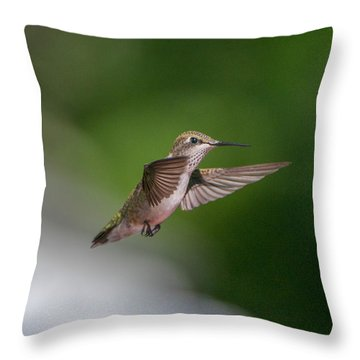 Female Ruby Throated Hummingbird Throw Pillow