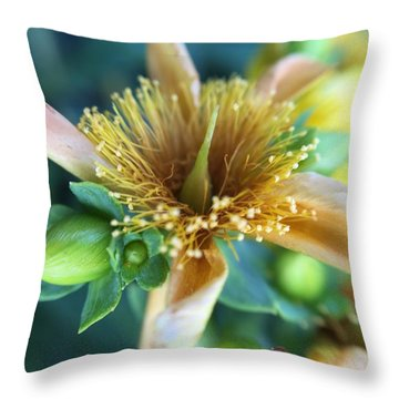 Flower Throw Pillow by Maxim Tzinman