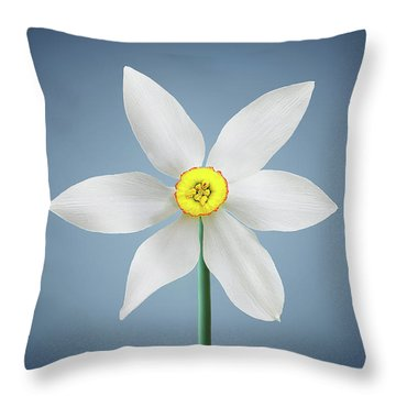 Throw Pillow featuring the photograph Flower Paradise by Bess Hamiti