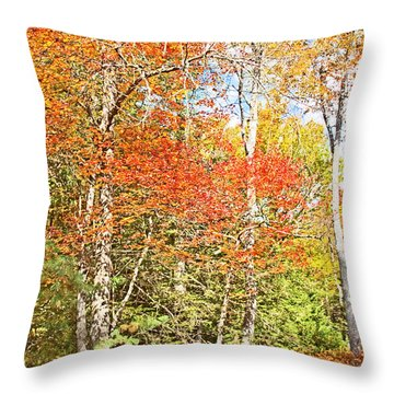 Throw Pillow featuring the digital art Forest Interior Autumn Pocono Mountains Pennsylvania by A Gurmankin