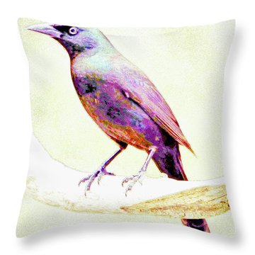 Great-tailed Grackle Throw Pillow