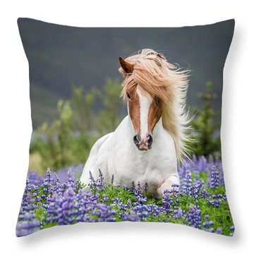 Horse Running By Lupines. Purebred Throw Pillow