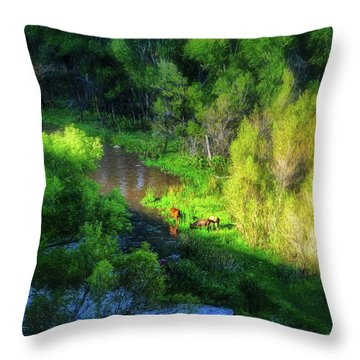 3 Horses Grazing On The Bank Of The Verde River Throw Pillow