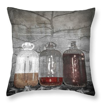 3 Jugs Throw Pillow by Marty Garland