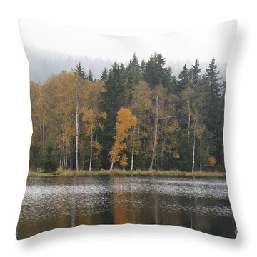 Throw Pillow featuring the photograph Kladska Peats by Michal Boubin