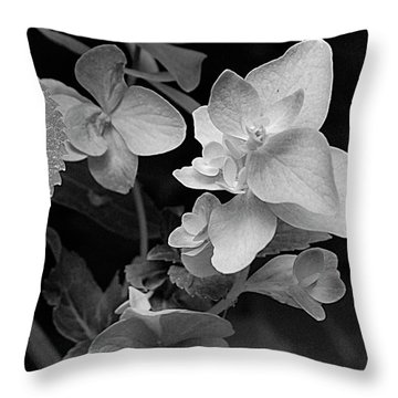 Magnolia Plantation And Gardens Collection Throw Pillow by DigiArt Diaries by Vicky B Fuller