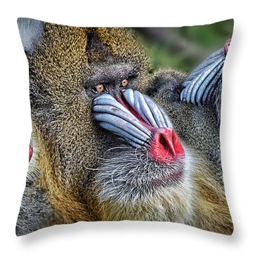3 Male Mandrills  Throw Pillow