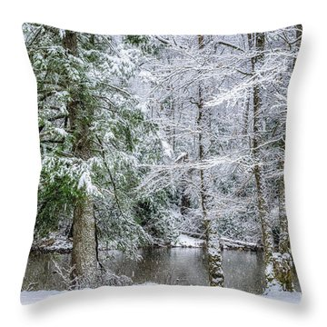 March Snow Along Cranberry River Throw Pillow