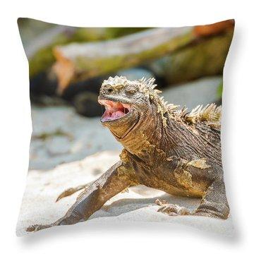 Marine Iguana On Galapagos Islands Throw Pillow