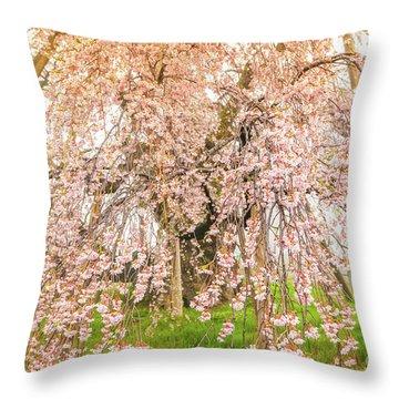 Throw Pillow featuring the photograph Miharu Takizakura Weeping Cherry04 by Tatsuya Atarashi