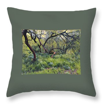 Morning Walk Trees Throw Pillow
