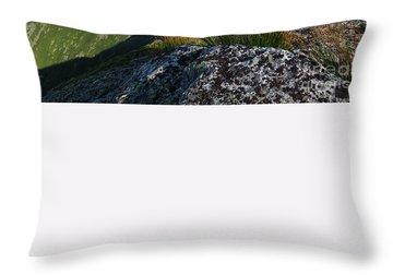 Mount Washington New Hampshire Usa Throw Pillow by Erin Paul Donovan