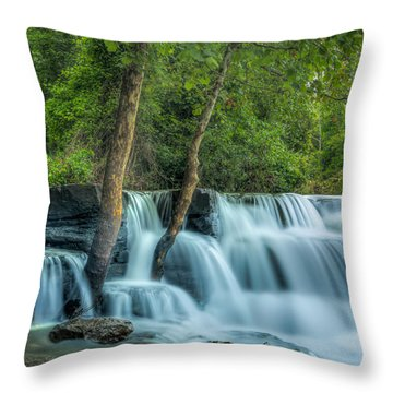 Natural Dam  Throw Pillow