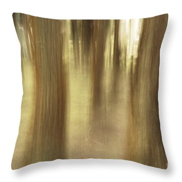 Nature Abstract Throw Pillow by Gaspar Avila