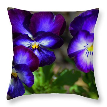 3 Pansies Throw Pillow by Kathleen Stephens
