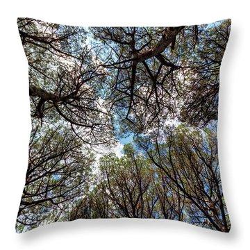 Pinewood Forest, Cecina, Tuscany, Italy Throw Pillow by Elenarts - Elena Duvernay photo
