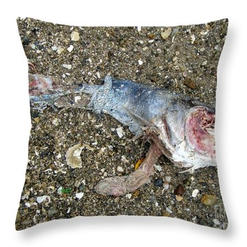 Throw Pillow featuring the photograph Pink  by Kristine Nora