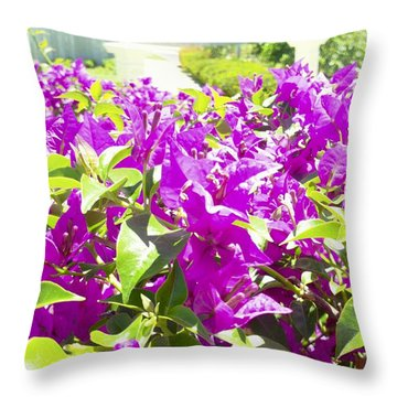 Ponce Urban Ecological Park Throw Pillow