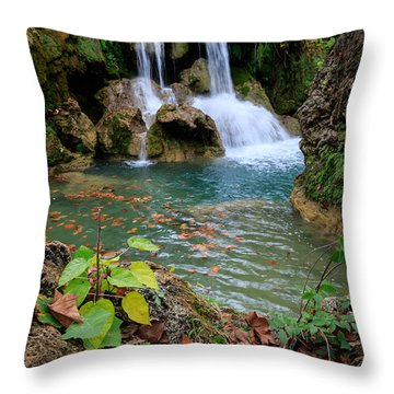 Price Falls In Autumn Color.  Throw Pillow