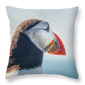 Throw Pillow featuring the photograph Puffin In Close Up by Patricia Hofmeester