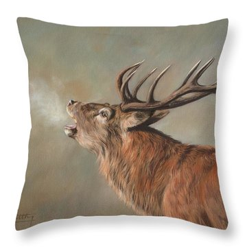 Red Deer Stag Throw Pillow by David Stribbling