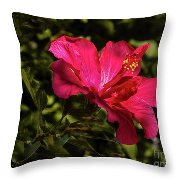 Throw Pillow featuring the photograph Red Hibiscus by Robert Bales