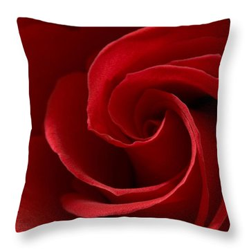 Red Rose I Throw Pillow