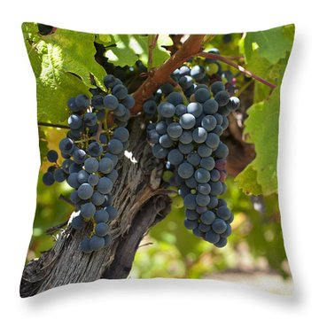 Throw Pillow featuring the photograph Red Vines by Ulrich Schade