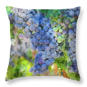 Red Wine Grapes On The Vine Throw Pillow
