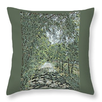 Riverside Park Throw Pillow