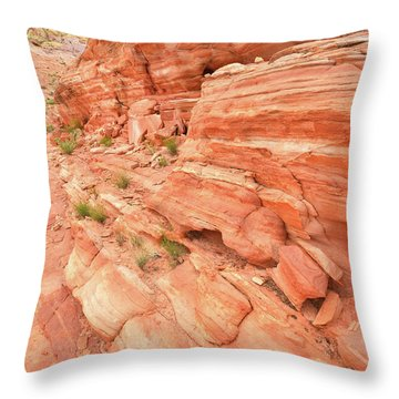 Throw Pillow featuring the photograph Sandstone Wall In Valley Of Fire by Ray Mathis