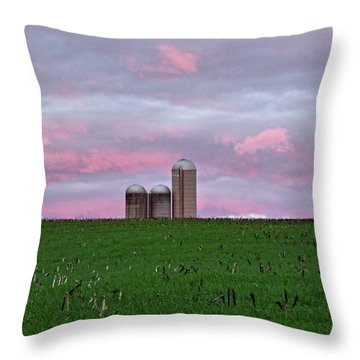 Throw Pillow featuring the photograph 3 Silos by Robert Geary