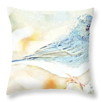 Slate-colored Junco, Snowbird, Male, Animal Portrait Throw Pillow