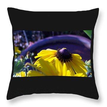 Sun Glory Series Throw Pillow by Marika Evanson