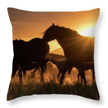 Sunset Band Throw Pillow