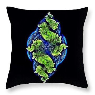 Tautological Fractals Throw Pillow