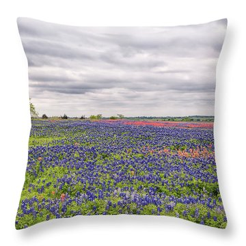 Texas Wildflowers 2 Throw Pillow