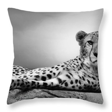Throw Pillow featuring the photograph The Cheetah by Christine Sponchia