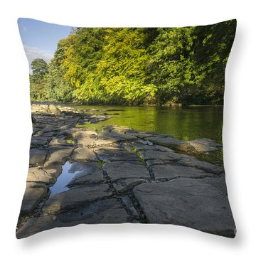 The River Swale Throw Pillow