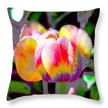 Tranquility  Throw Pillow by Don Wright
