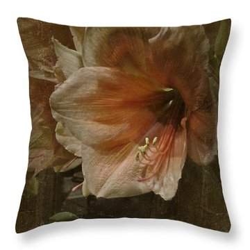 Throw Pillow featuring the photograph Vintage Amaryllis by Richard Cummings