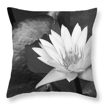 Water Lily Throw Pillow by Bill Brennan - Printscapes