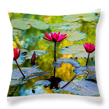 3 Water Lilys Throw Pillow