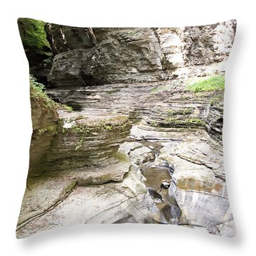 Watkins Glen New York Throw Pillow