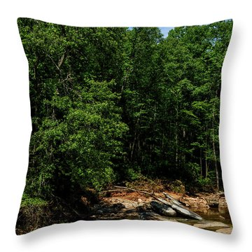 Throw Pillow featuring the photograph Williams River After The Flood by Thomas R Fletcher