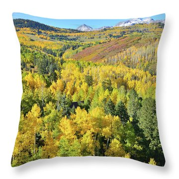 Throw Pillow featuring the photograph Wilson Mesa by Ray Mathis