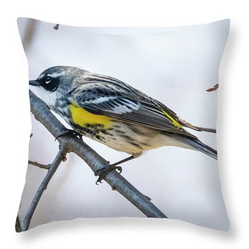 Throw Pillow featuring the photograph Yellow-rumped Warbler  by Ricky L Jones