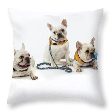3010.064 Therapet Throw Pillow