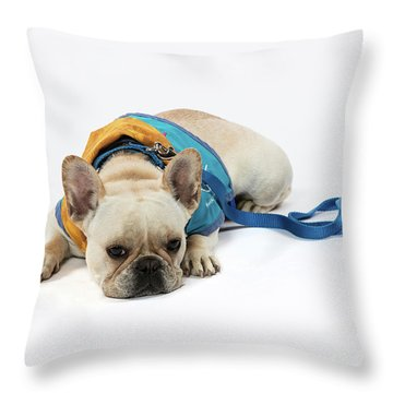 3010.066 Therapet Throw Pillow